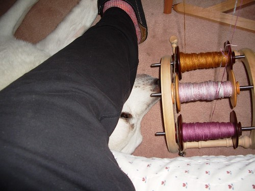 while plying, Sam's always under foot, March 27