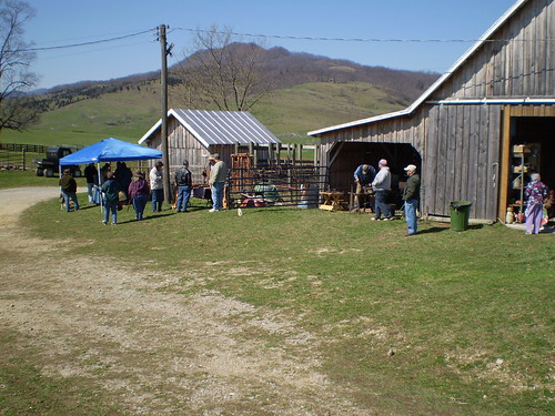 Sheep Shearing Day Vendors