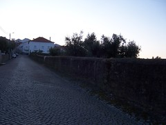 TejInt_090410_065836_MoJo (Rosmaninhal, Castelo Branco, Portugal) Photo