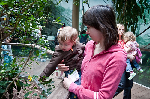 Central_Park_Zoo-21