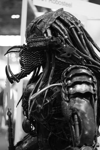 Predator Standing Guard