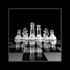Chess :: Light Box (Salva Mira) Tags: blackandwhite bw blancoynegro glass reflections chess bn cristal escacs ajedrez reflejos blancinegre reflexes vidre salvamira