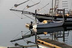 Gig Harbor Boats (aquilasteve) Tags: reflection boats gigharbor