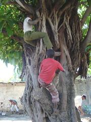 Centro de Encentro (Escola de Rua Maputo) Tags: poverty africa boys meninos streetchildren mozambique maputo meninosderua straatkinderen probeza