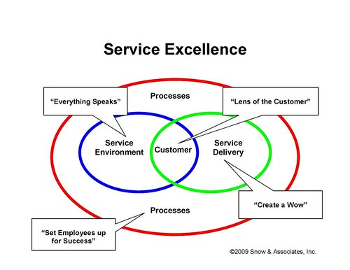 DNA of Service Excellence by you.