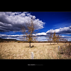 Before the bitter cold winter arrives, leaves are all lost and the depression sets in. ([ Kane ]) Tags: trees sky tree field grass clouds rural fence landscape farm australia nsw qld queensland kane gledhill kanegledhill vosplusbellesphotos kanegledhillphotography