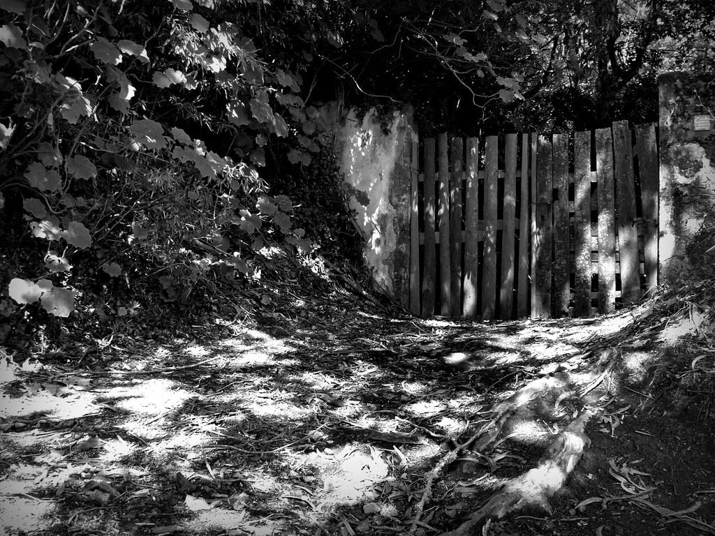 the gate P1190937
