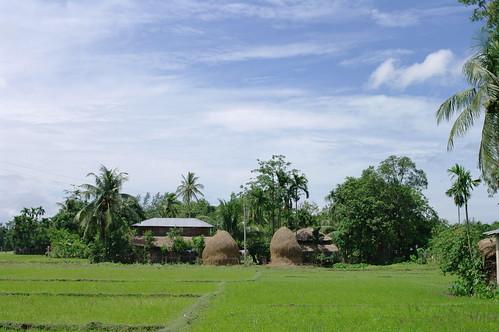 ukia.bangladesh
