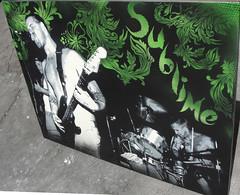 Everything under the sun3 (STENZSKULL) Tags: original music streetart art colors brad stencil eric montana punk paint bradley mtn spraypaint bud reggae sublime stencilart dub musicart nowell skunkrecords stenzskull