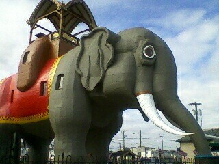 I love Lucy the Elephant in Margate, NJ! So big, can't fit her.