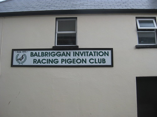 2011 06 06 Balbriggan Ireland 056
