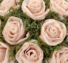 More Roses (Meer Roosjes) (Made by BeaG) Tags: pink flowers original roses flower green rose creativity design moss artist belgium designer handmade unique oneofakind ooak kunst tissue belgi roos creation wax bouquet unica paperflowers unicum beag roosjes kaarsvet candlewax zakdoekjes kunstenares tissueflowers uniquedesign ontwerpster meltedcandles originaldesigner creativedesigner tissueroses leftoverpiecesofcandle tissueandwaxflowers designedandmadebybeag uniekontwerp ontworpenengemaaktdoorbeag tissueandwaxroses tissueandcandlewaxroses makingtissueroses makingrosesoutoftissues makingtissueandwaxroses makingrosesoutoftissuesandwax makingflowersoutoftissuesandcandles rozenmakenuitpapierenzakdoekjes roosjesmakenuitpapierenzakdoekjes roosjesmakenvanpapierenzakdoekjesenkaarsvet bloemenmakenvanpapierenzakdoekjes bloemenmakenvanpapierenzakdoekjesenkaarsvet