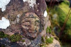 Etrange sculpture à proximité du château de Salm (Philippe_28) Tags: france castles alsace château ruinen schlösser salm burgen labroque