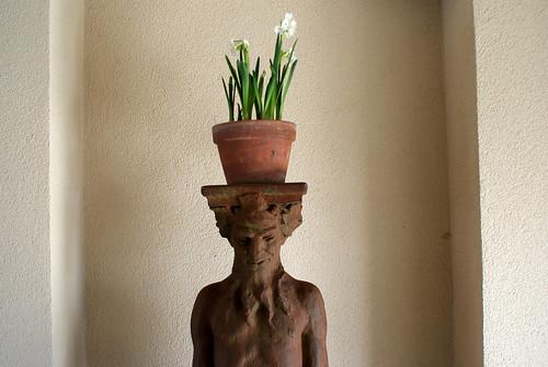 towerhill statue daffodil head
