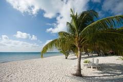 Bounty island (Dmitry Chastikov) Tags: winter sea nature landscape mexico island sand pentax coconut bluesky palm cielo whitesand mujeres bounty isla islamujeres  sigma1020 k20d
