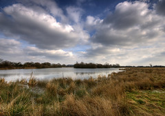 England: Northamptonshire - Big Cloud Day (Tim Blessed) Tags: uk trees sky nature clouds reeds landscapes countryside scenery searchthebest lakes wetlands ponds singlerawtonemapped goldstaraward