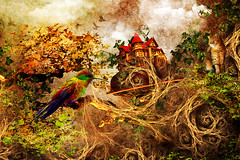 Nature (Marco Escobedo  Art / Design) Tags: light portrait naturaleza house flower colour cute art nature girl smile digital cat photoshop dark arbol photo nice paint graphic extreme gothic exotic help fantasy gato ave dreams change fixed makeover retouch effect bir dreamcatcher desing diosa transformacion gotico bello bauty coolshot justimagine gotick manipulacin bratanesque memoriesbook theunforgettablepictures alemdagqualityonlyclub alemdaggoldenaward