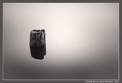 Floating (Paolo De Faveri landscape photography) Tags: winter blackandwhite mist cold water vertical fog reflections river landscape log haze stump
