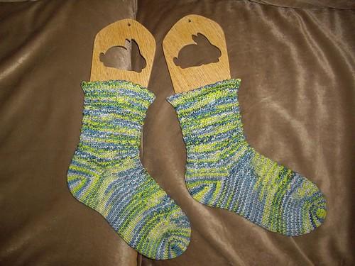 Emily's Lost Socks