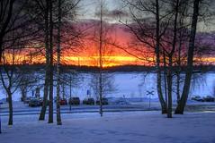 Another sunset (TimoOK) Tags: sunset sea snow tree lumi puu meri hdr vaasa auringonlasku