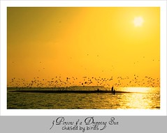 3 persons and Sun - Chased by Birds (Prof EuLOGist) Tags: birthday sunset sun beach birds island mary maldives sandbank chasing atoll jinan hussain janah raniya dhaalu