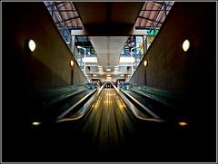 Simetria subterranea (Foto-Matn) Tags: goldcollection