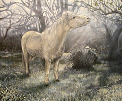 Beauty in the frost, Oil on canvas, 2009 Rick Dickinson, Crow Lane Studio. (Rick_Dickinson) Tags: beauty frost orchard whitepony oilpaintin whiehorse rickdickinson crowlanestudio wwwcrowlanestudiocom ponyinthefrost horseinanorchard