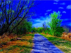 early spring day, path to the Blue Moon Lagoon (spysgrandson) Tags: blue nature spring texas path bluesky trail wichitafalls sonycybershot onlythebestare bluemoonlagoon spysgrandson 032909