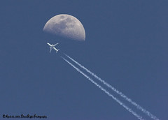 Fly Me to the Moon (Herb Dunn (YosemiteJunkie)) Tags: kpa otw naturescall estremit herbdunn dunnrightphotography kerncountyphotographers
