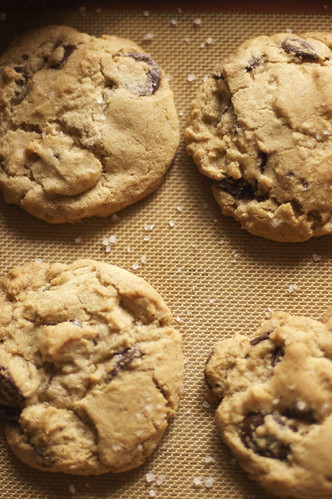36-hour cookies V