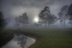 [フリー画像] [自然風景] [霧/靄] [河川の風景] [樹木の風景] [暗雲の風景] [HDR画像]     [フリー素材]