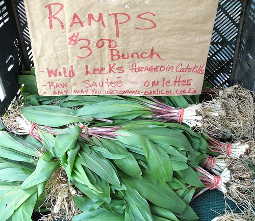 Berried Treasures ramps