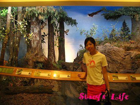 nEO_IMG_博物館三峽 268