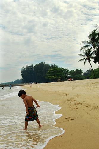 budak pantai (APAD)