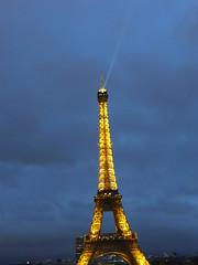 Eiffel tower evening 529