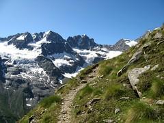 Roccia viva (Aldo 24x36) Tags: path sentiero montagna leonessa cogne parconazionale granparadiso valnontey tribolazione rocciaviva beccadigay herbetet grancrou beccodellapazienza