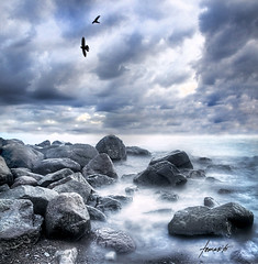 Wild Earth // HDR (Tomasito.!) Tags: longexposure blue light sky beach water birds clouds nikon rocks flickr waves philippines flight monotone explore hdr filipinas waterscape tomasito d90 18105mm nikond90 alemdagqualityonlyclub yourwonderland pcp2011 theartofthelongexposurelandseascape