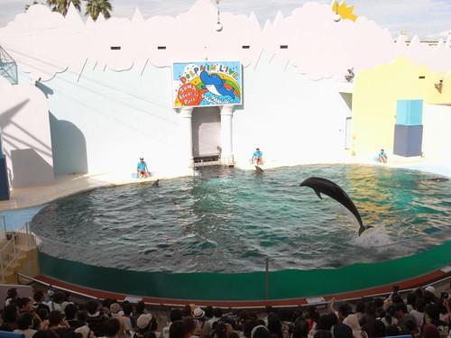 須磨海浜水族園-15