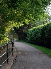 Path (My TVC 15) Tags: trees light summer ontario green london walking pretty path alongthethamesriver olympusvr320