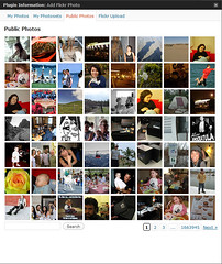Flickr Manager 2.3 Browse Panel