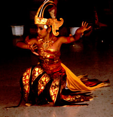 Bali Dancers / Balinese Dance - Kneeling (Dominic's pics) Tags: bali orange yellow indonesia gold golden dance costume dancers traditional culture slide scan event filter transparency 1998 noise kneeling hindu performer dharma canoscan balinese agama seriousexpression reducenoise balinesedance 8800f agamahindudharma