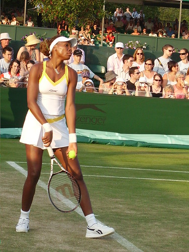 Venus_Williams_1_by_bettyspesh
