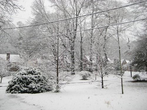 Atlanta Snow Day (Front Yard)