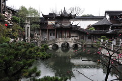 Hu Xueyan Villa  (Y. Peter Li Photography) Tags: china flowers fish flower rain businessman garden pond blossom famous plum villa bloom hangzhou raining residential hu dynasty zhejiang qing xueyan