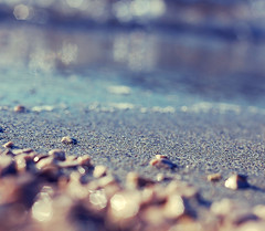 Floating along on a lazy summer day thinking about last night & who she's going to gobble up today~ (Tja'Sha) Tags: imisssummer bokehlicious nikond40 bokehwhores fiddywhores hbweve happybokehwednesdayeve dofalicious beachkeh