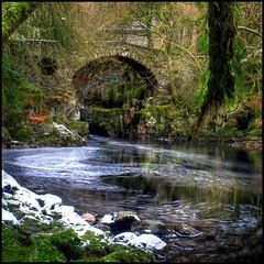 Mossy (angus clyne) Tags: bridge snow pool river scotland moss stream perthshire hermitage dunkeld birnam flikcr thehermitage braan strathbraan mywinners riverbraan notveryfarfromhomeatall foamywhitestuff