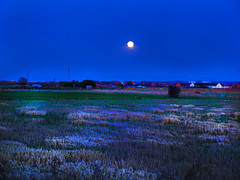 Moon Field (Steve Toner) Tags: uk moon field mystery dark wonder weird heaven colours bright surreal creepy nighttime moonlight mystical moonscape irridescent feild wirral moonglow apocolyptic moonfelid titmoon nuclearkinky
