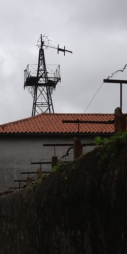 Oliveira do Douro 087
