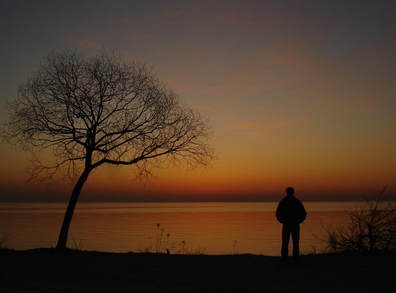 Sunrise 13021 006i