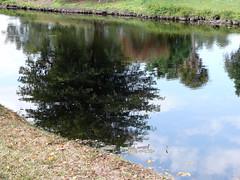 Around Weston (tchamber236) Tags: vacation florida weston vacationvillage